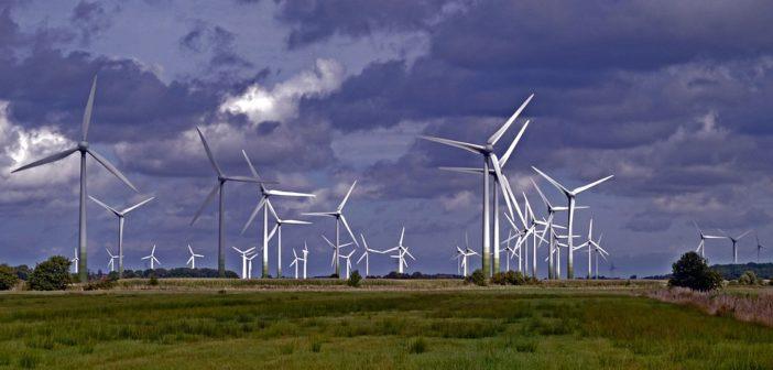 Développement du parc éolien