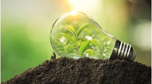 Choisir un fournisseur d'électricité éco-responsable