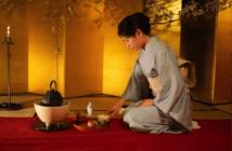 culture du thé au japon